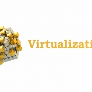 Virtualization 1 1